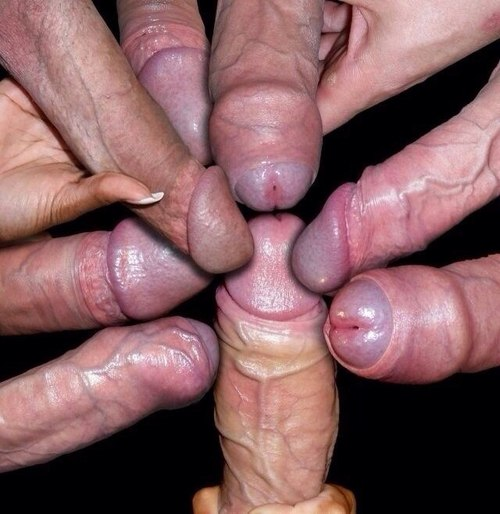 group-dick-1