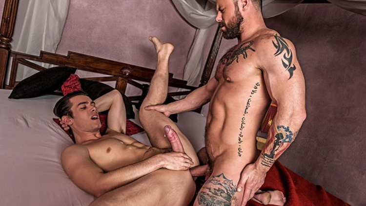 free daily gay porn videos
